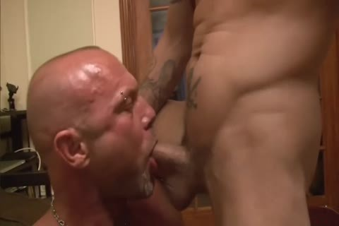 Damon Doggs pound Stoopid - Scene three